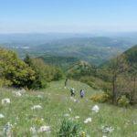 Salendo per Monte Calvello